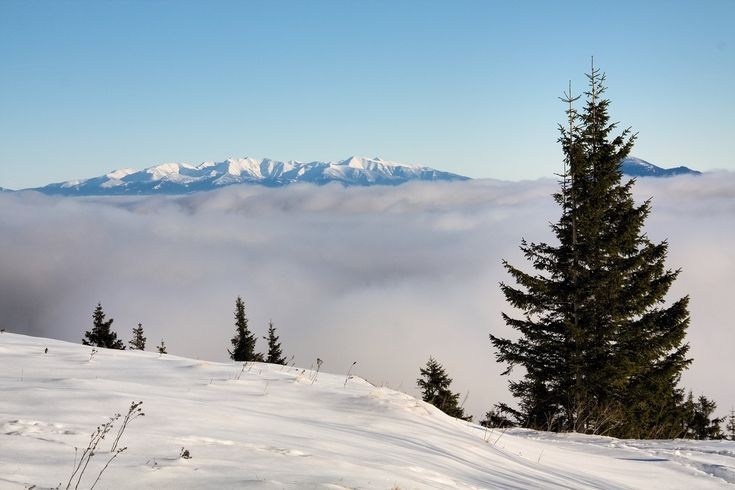 Amazing day with amazing views all around. This is view at the West Tatras from the Small Fatra, Slovakia