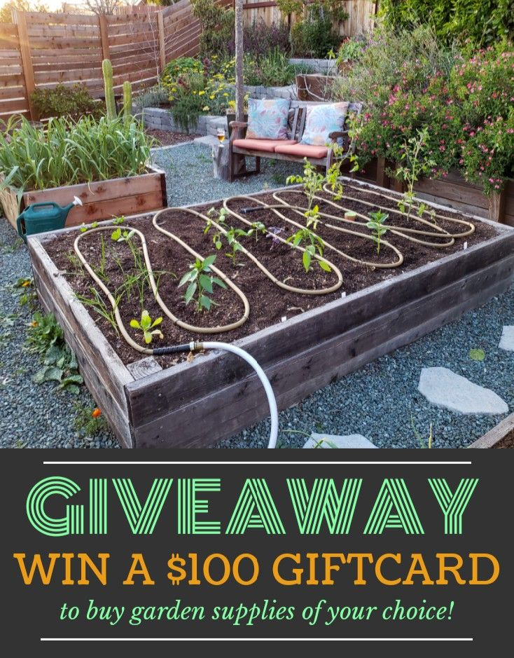 Giveaway Deannacat3 Teamed Up With Gardeners To Give Away