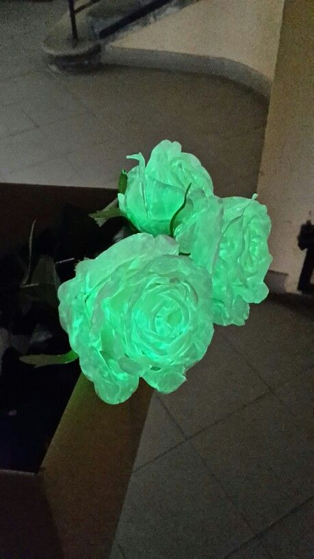flAVATAR-Silk roses