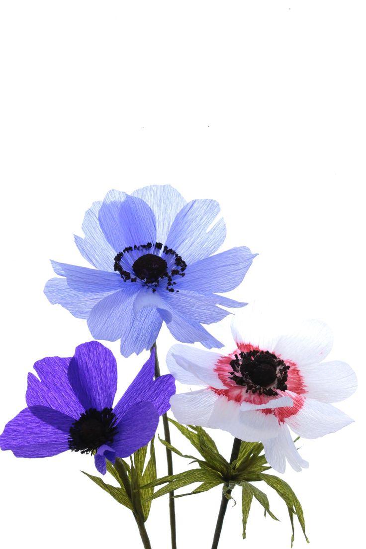 The 161 Best Papetal Paper Flowers Images On Pinterest 3d Paper