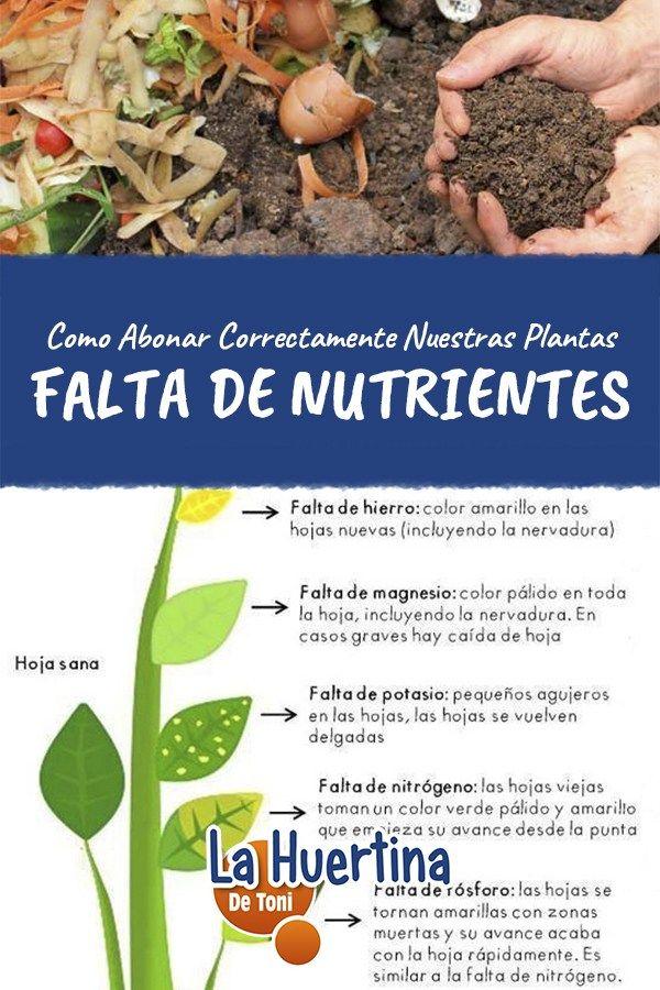 20ab1493e Como Abonar Y Falta De Nutrientes En Las Plantas - La Huertina De Toni