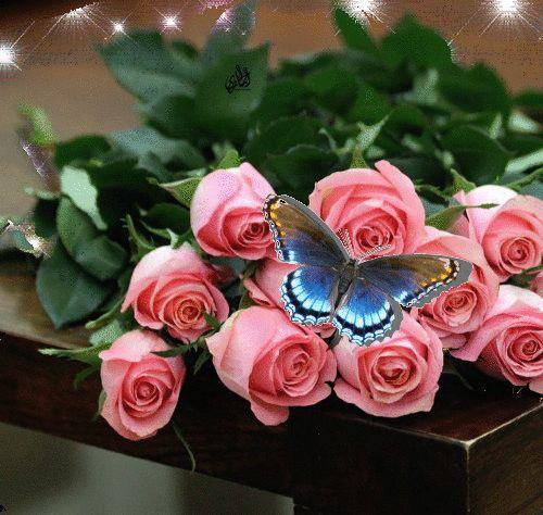21 Best Youmu Konpaku Images On Pinterest: 17 Best Images About Gif Flowers On Pinterest