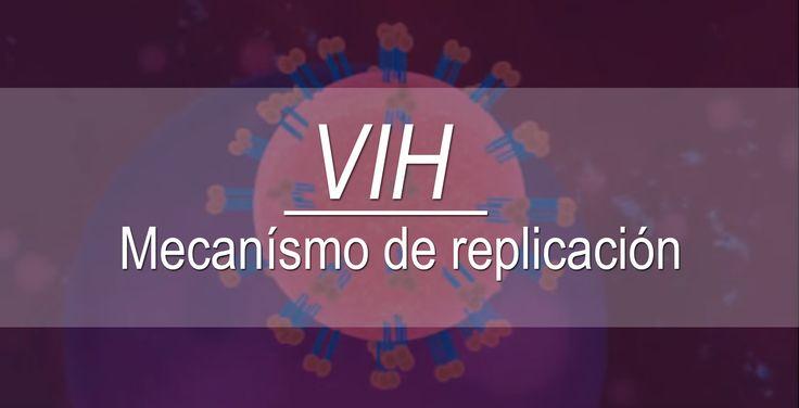 #Medicina   ¿Alguna vez te has preguntado cómo se replica el VIH, dentro del cuerpo humano? Te invitamos a ver la siguiente cápsula. ➔ http://goo.gl/qSKNO8 #VIH #Farmacología #CuerpoHumano