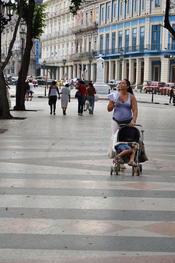 Manicera (Votar por esta obra en http://observarte.net)