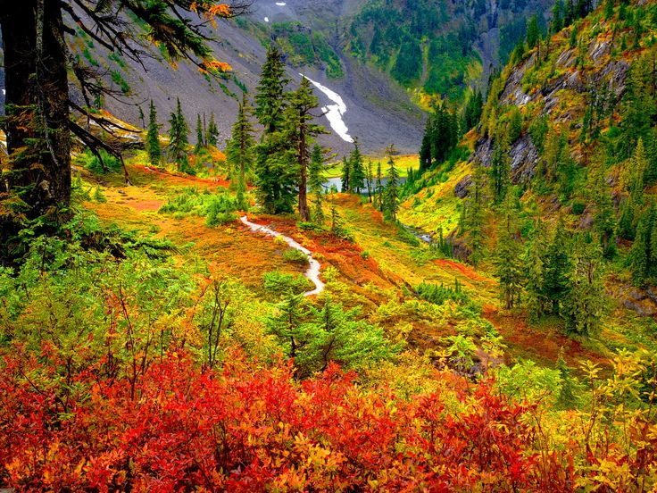 The Marble Mountain Wilderness California, USA
