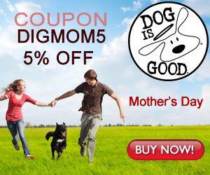 dog bakery dog food online wellness dog food pet world dog biscuits kitten food pets supplies plus