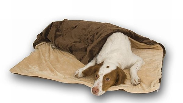 25 Best Ideas About Heated Dog Bed On Pinterest Dog In