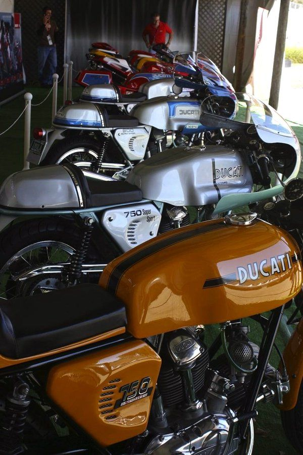"motorcycles-and-more: ""Ducati Cafe Racer """