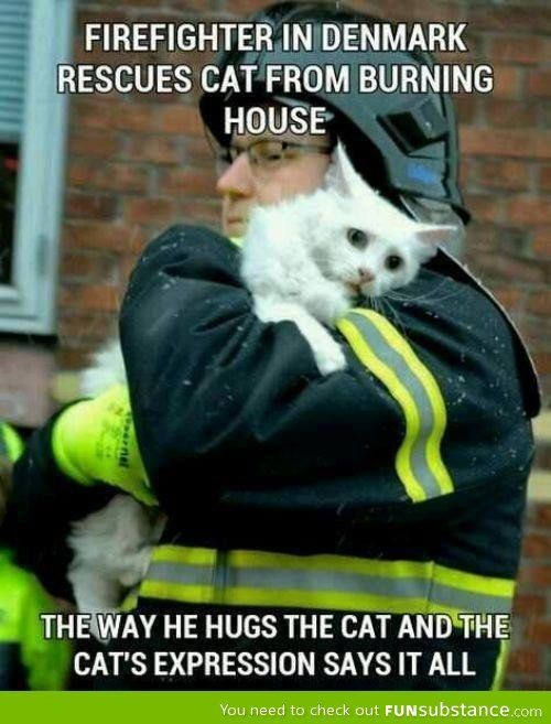 The cats expression breaks my heart. Faith in humanity restored