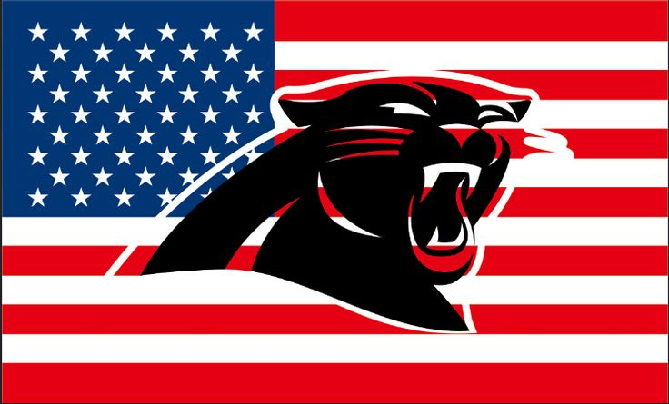 Cheap 3x5 flag, Buy Quality flag 3x5 directly from China panthers flag Suppliers:  3x5 ft Hollow Out Shape with USA Carolina  Panthers flag with 100D Polyester digital printed