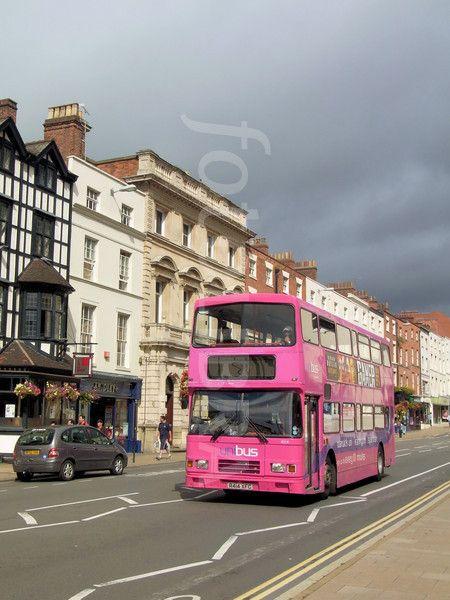 Pink Double Decker