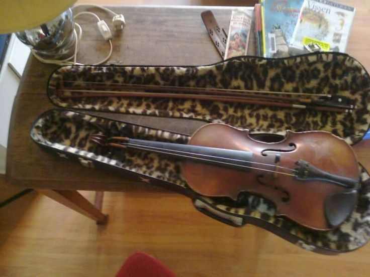 A violin's beauty case