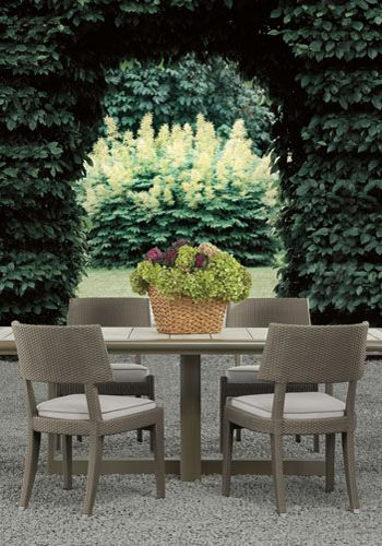 Melina Woven Dining Chair By Sutherland