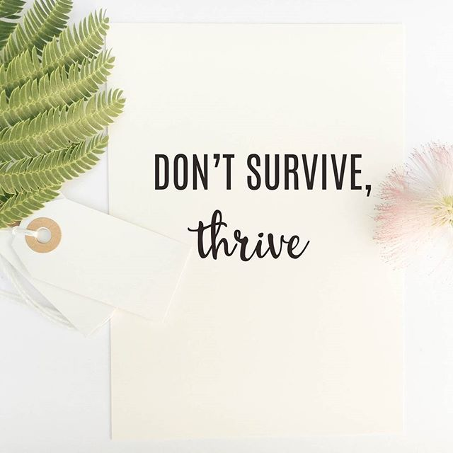 - Design - Details Just what point is there in living every day like it's a chore? There isn't any point, that's what point there is! And so I beg of you, don't just be content surviving day to day, a  #inspirationalquotes