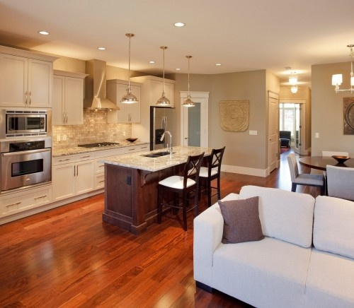 Semi Open Plan Kitchen Ideas: Great Condo Or Small Home With Open Floor Plan