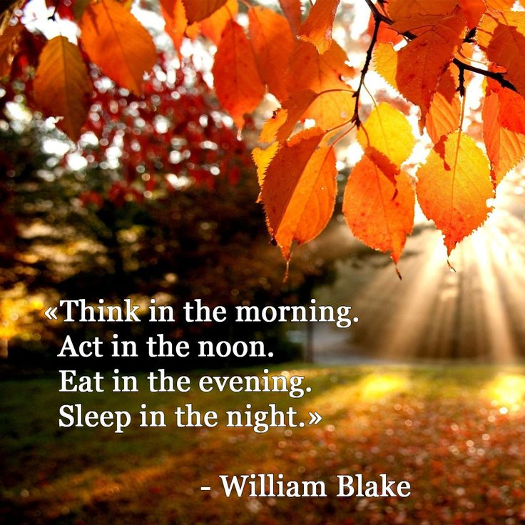 William Blake, quotation, wisdom words, poet, writer