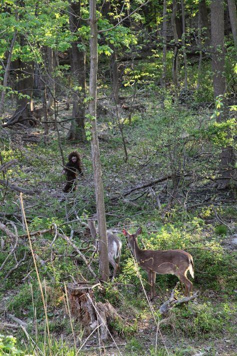 Bigfoot Evidence: Alabama Minister Thinks She Recorded a Baby Bigfoot