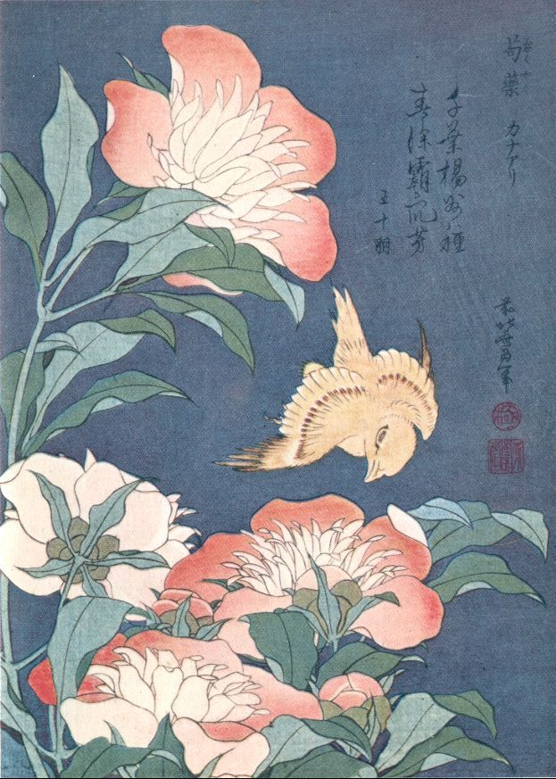 Peonies and Canary. Woodblock. National Museum at Tokyo.