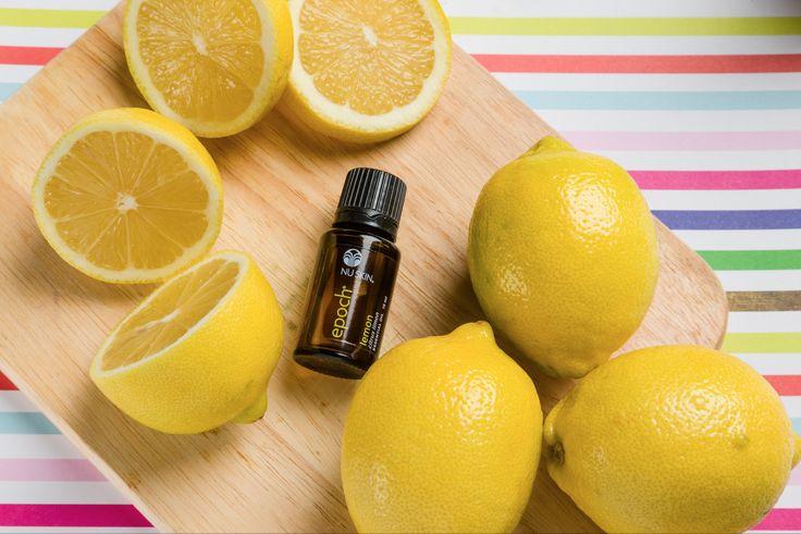 Similar en muchos aspectos a la cáscara del limón, este aceite esencial ofrece una sensación de frescura y vigor a cualquier espacio que verdaderamente te sorprenderá y encantará. Epoch® Limón puede ser utilizado como un limpiador natural para eliminar olores. #aceitesesencialesepoch
