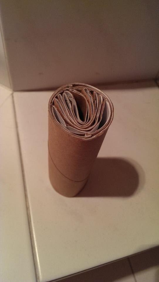 Quand cette personne avait la flemme de jeter ses six rouleaux de papier toilette.   23 victoires impressionnantes de la paresse moi heu non !!!!!mdr