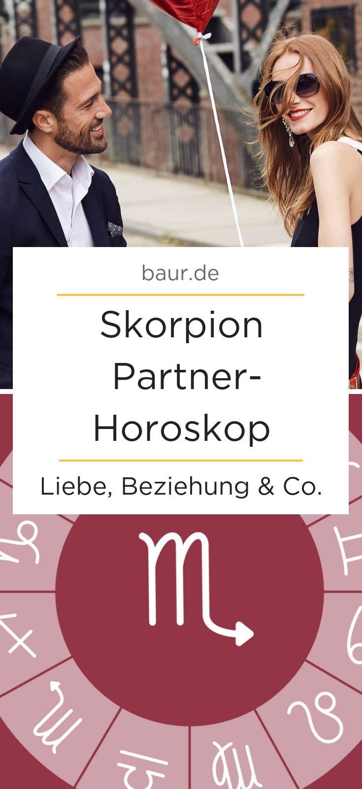 skorpion und skorpion partnerschaft