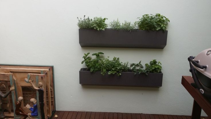 If you are interested to make Wall Garden into the balcony of your house in Australia, you can contact at Keystone Gardens.