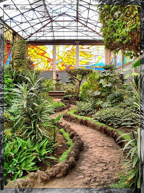 Jardin Botanico Toluca Mexico