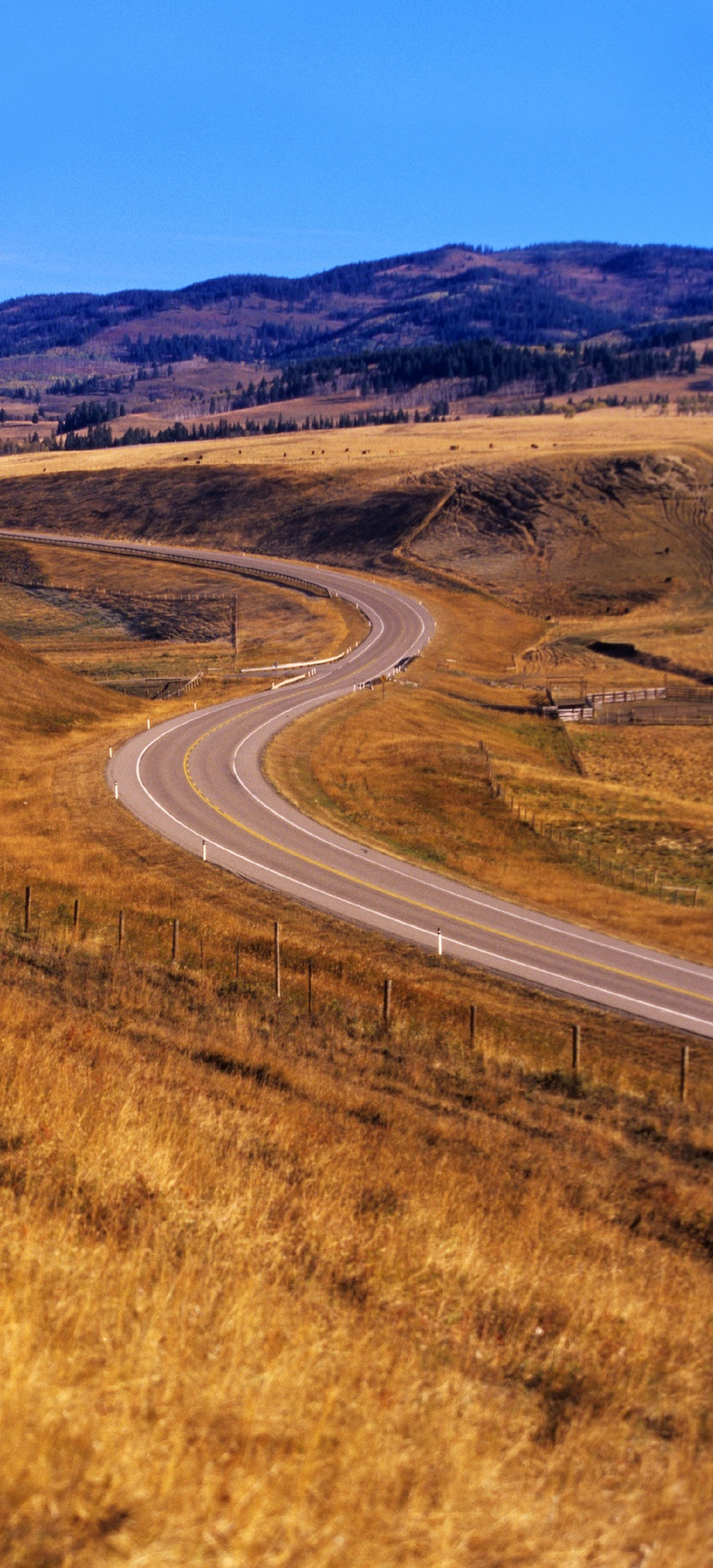 Scenic driving in Southwest Alberta http://exploresouthwestalberta.ca/index.asp