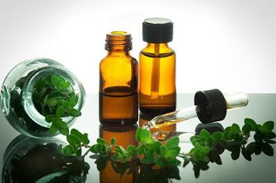 Oregano Oil Is Far More Superior Than Prescription Antibiotics, Without The Side Effects