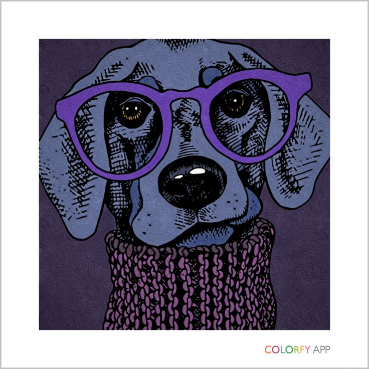 The 39 Best CREATE Colorfy Images On Pinterest