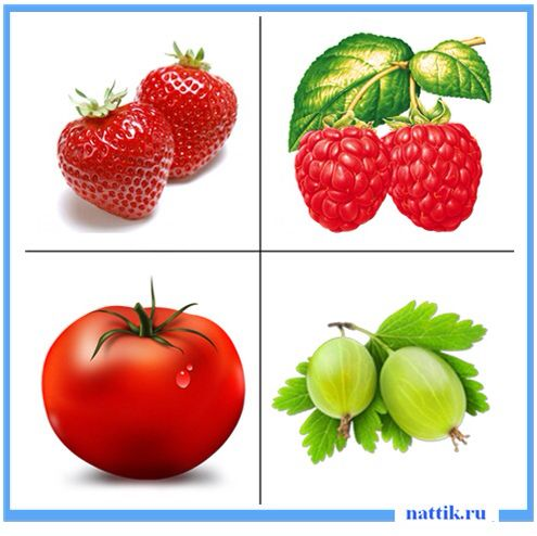 a matrix on fruits and vegetables The food matrix in delivery of micronutrients and phytochemicals, their impact  on  nicholas gillitt, phd, is vice president of nutrition research for dole foods .