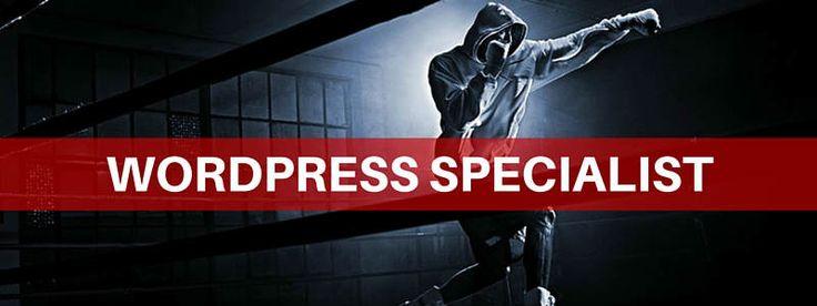 Il WordPress Specialist è un web designer specializzato nella realizzazione di siti web con WordPress. Scopri il profilo nell'intervista di Tiziano Fogliata