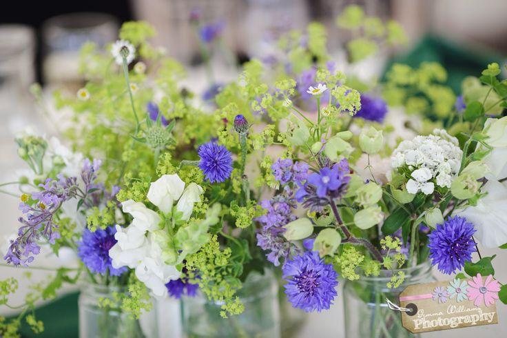 307 Best Seasonal Summer Flowers Images On Pinterest