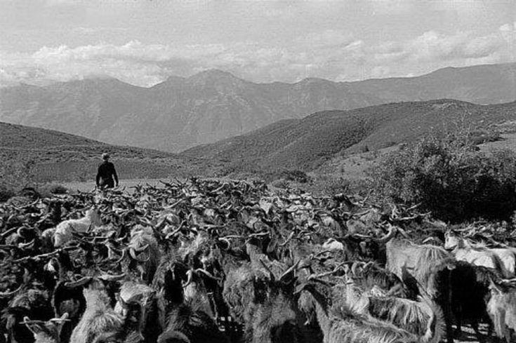 Στο δρόμο Τρίπολης-Σπάρτης, 1951. Henri Cartier Bresson