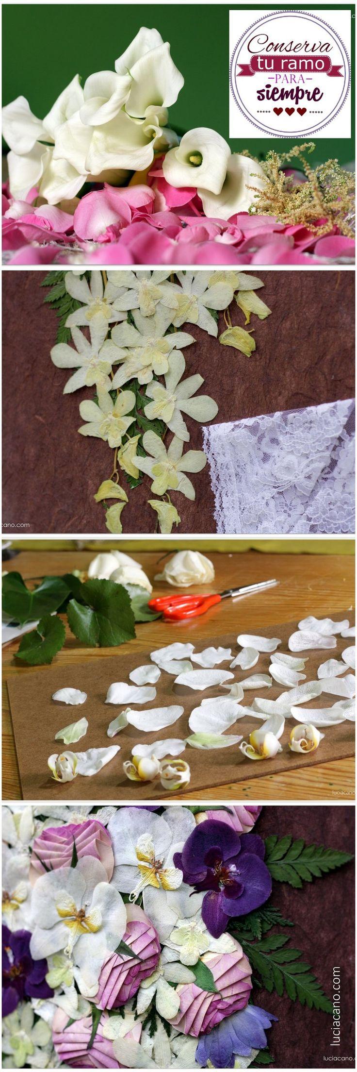 Calas, astilbe, peonias, orquídeas, rosas, gerberas, ranúnculos ... cada flor necesita un cuidado especial; pero podrás secarlas todas. ¡Tú eliges tu ramo de novia, nosotras te lo conservamos! www.luciacano.com