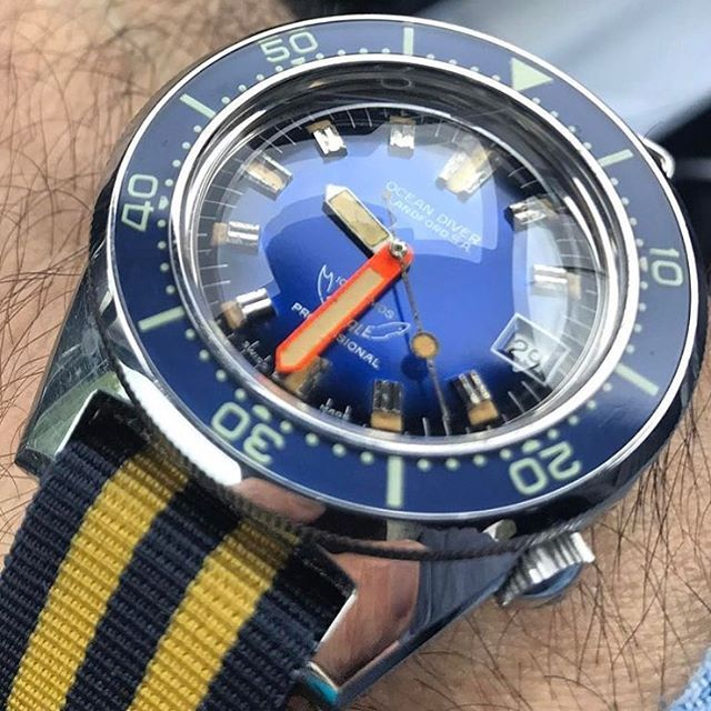 REPOST!!!  Gorgeous Blandford Ocean Diver Squale Master with killer acrylic bezel and superdome crystal. 🙌🏼 Pic credit: @angelogallamini >>Tag @vintagediver for a chance to be featured<< #vintagediver #divewatch #wis #watch #womw #wristporn #instawatch #dailywatch #watchgeek #watchfam #watchcommunity #hodinkee #thedivewatchconnection #wornandwound #horology #watchesofinstagram #squale #vintagesquale #squalemaster #blandford #oceandiver #superdome #acrylicbezel  repost | credit: ID…