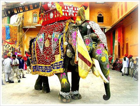 Best PAINTED INDIAN ELEPHANTS Images On Pinterest In India - Indias 9 coolest cultural festivals