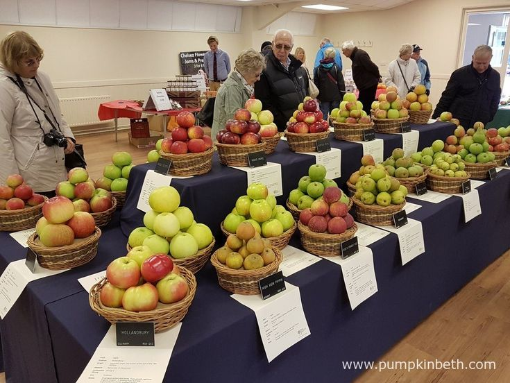 Inside the Hillside Events Centre at Taste of Autumn, at RHS Garden Wisley, you can view this wonderful apple and pear exhibit and learn more about some of the many different varieties of apples and pears available.