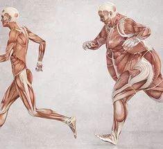 Гормон лептин: как избавиться от лишнего веса