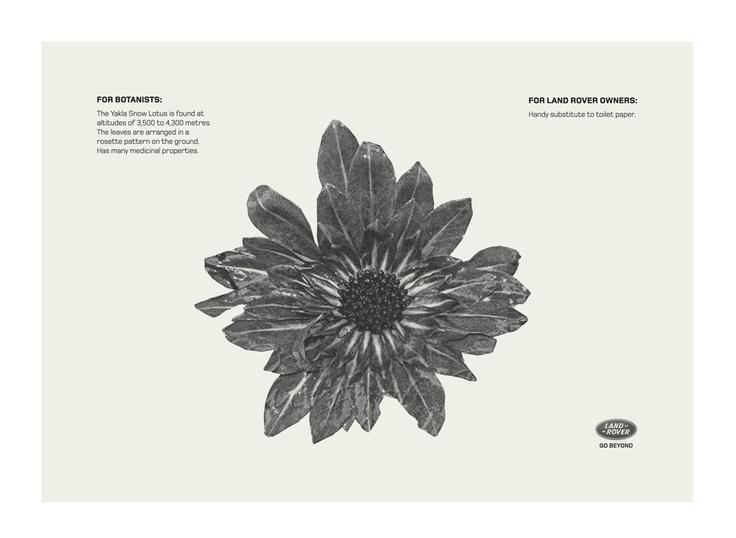 Campaign: Yakla Snow Lotus / Advertiser: Land Rover / Agency: Y Dubai / Country: UAE / Creative Director: Shahir Zag & Kalpesh Patankar / Art Director: Kalpesh Patankar / Award: Copywriting Cristal