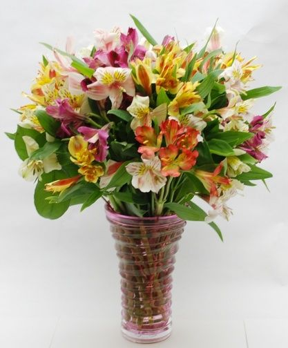 Alstromeria In Bloom-Whether you call them alstromeria or Peruvian lilies, these beautiful long lasting flowers are sure to please a lucky recipient. Designed in a lovely vase in a variety of the best available colors; pictured here in full bloom. #SpringFlowers #NorfolkFlorist #NorfolkFlowers