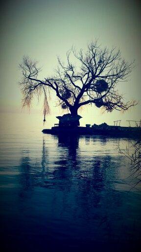 Balaton sàrkàny