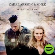 Never Forget You, a song by Zara Larsson, MNEK on Spotify