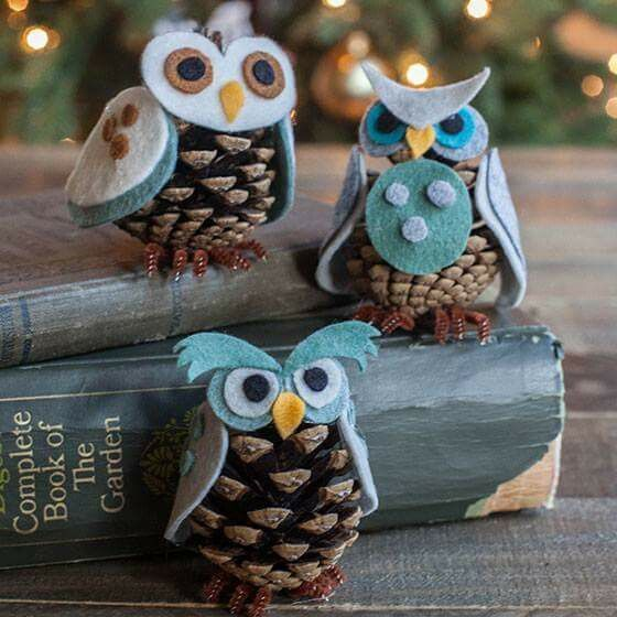 Owl pinecones