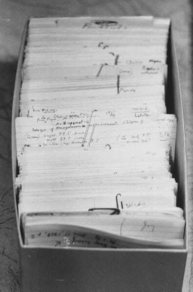 nabokov's index cards