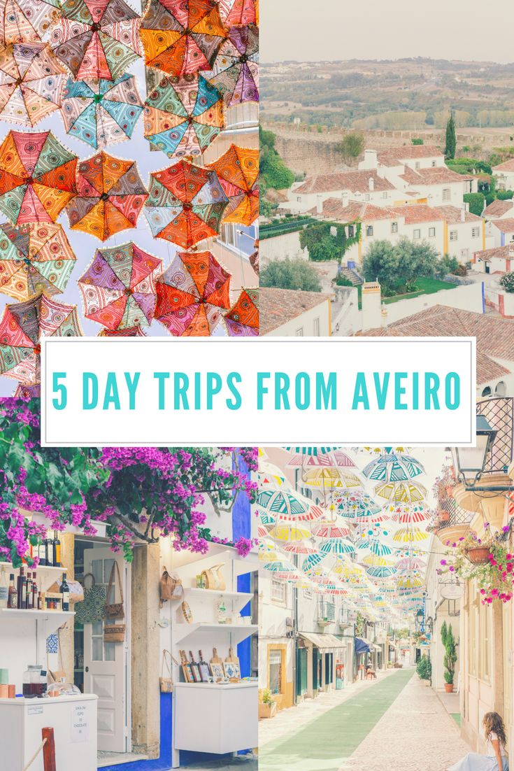 Portugal Travel Guide: 5 Day Trips from Aveiro - FashionEdible