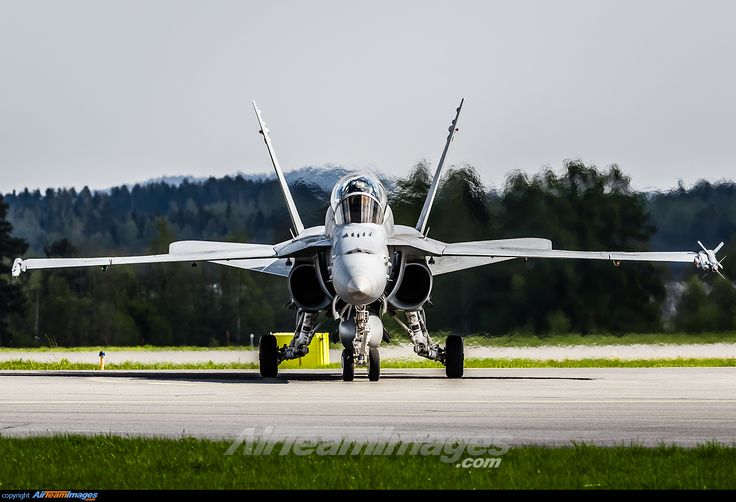 Finnish Air Force McDonnell-Douglas F/A-18D Hornet