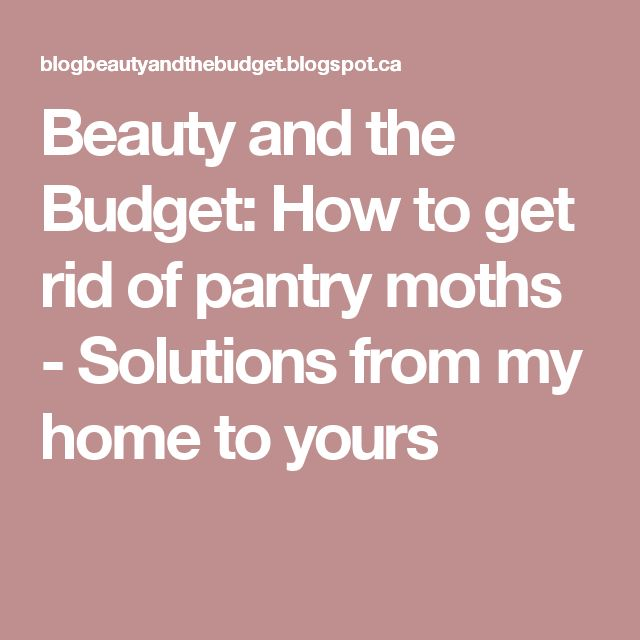 25 Best Ideas About Pantry Moths On Pinterest Moth Repellent Meal Moths And Stain Removers
