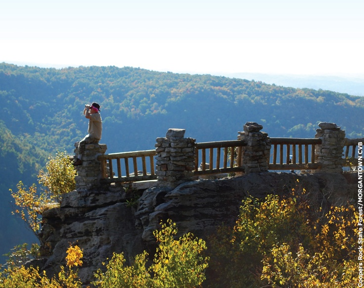 Did you know Coopers Rock is the largest state forest in West Virginia? With scenic views of the Cheat River nestled along beautiful hiking trails, Coopers Rock State Forest is a local must-see for any adventurer hoping to catch a glimpse of something wild and wonderful.