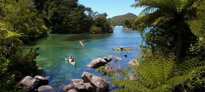 3 Day Walk and Kayak Guided Abel Tasman Tour